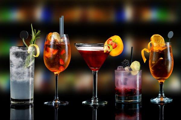 gin sabores diferentes