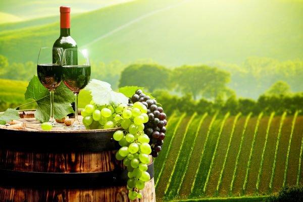 vinho verde alentejo