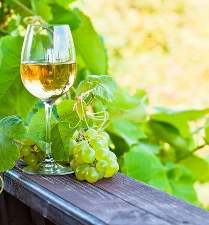 vinho verde capa 2
