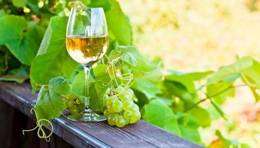 Procurando uma bebida nova? Vá de vinho verde!