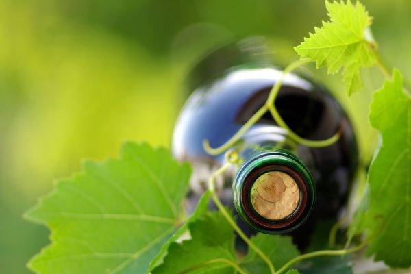 vinho verde garrafa