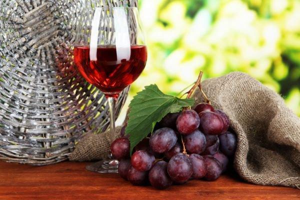 vinho orgânico produção