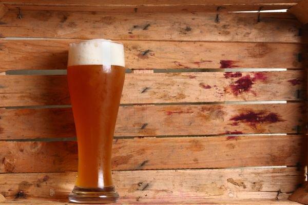 copos para cerveja - trigo