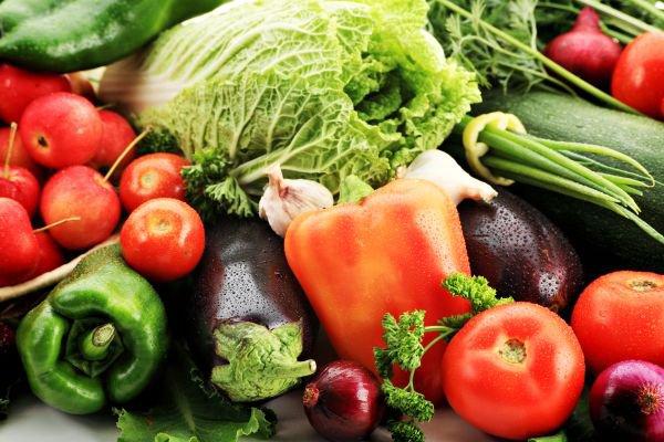 dia do planeta organico
