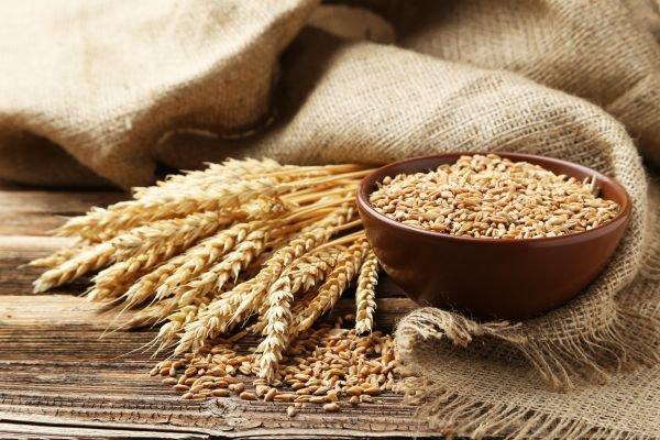 farinha integral - trigo