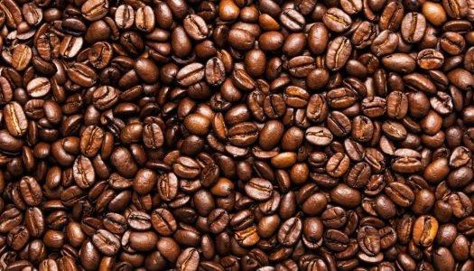 [Infográfico] Dia do café: Quais são os melhores cafés do mundo?