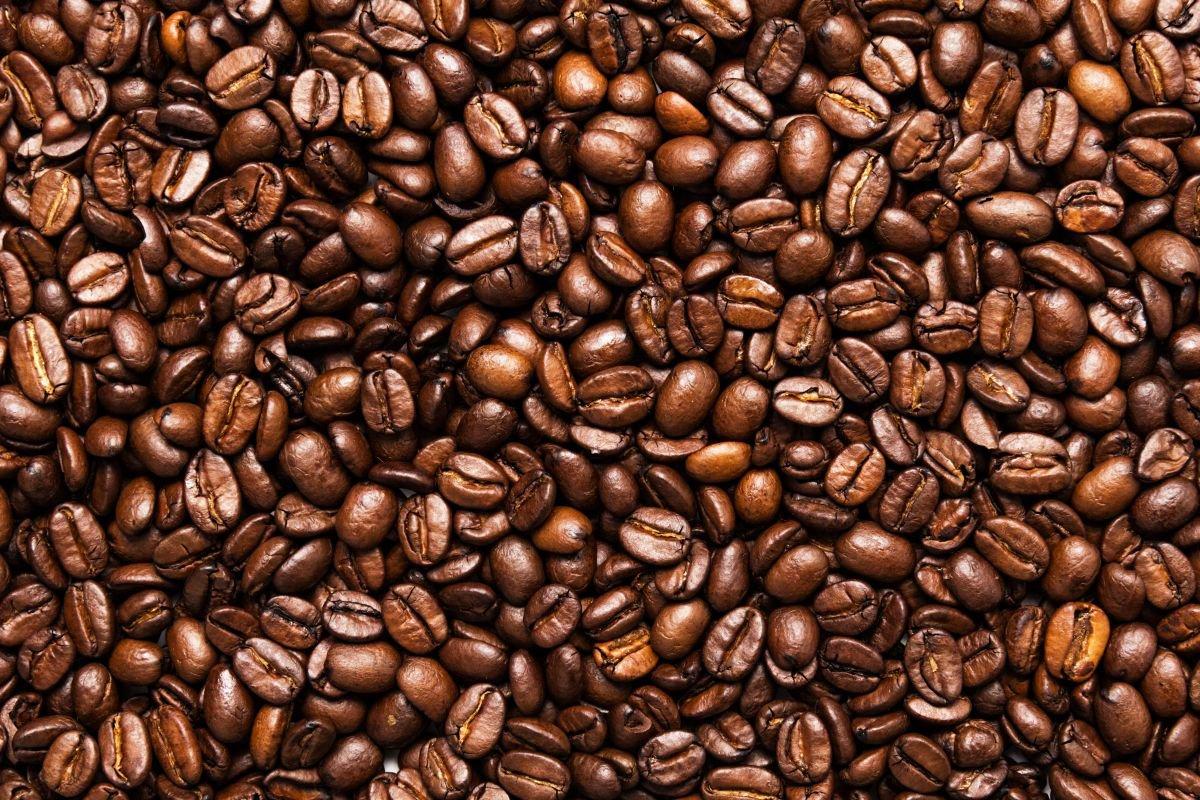melhores cafés do mundo - capa