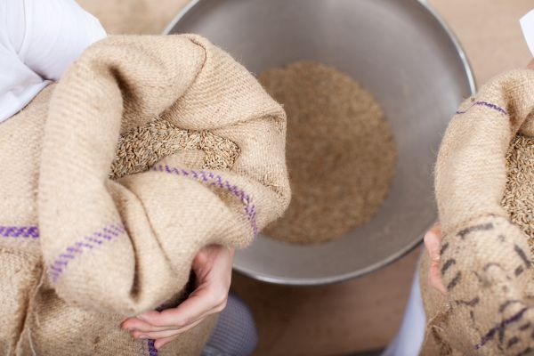 tudo sobre o trigo - moagem