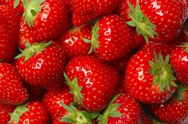 guardar frutas e vegetais - geladeira