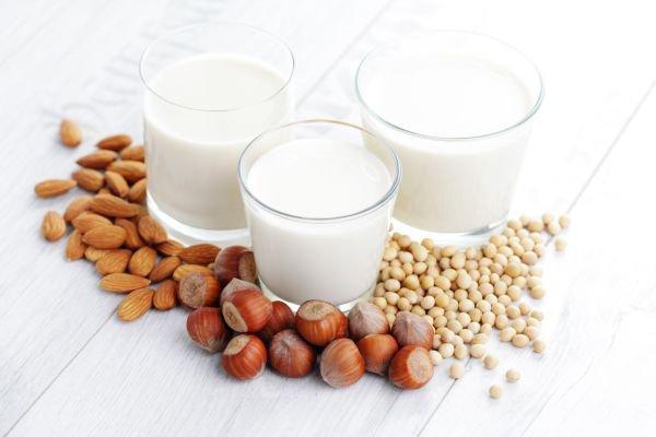 tipos de leite - leite vegetal