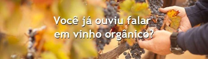 dia do blog - vinho orgânico