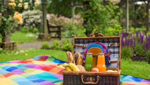 Veja essas comidas para piquenique para começar bem sua primavera!