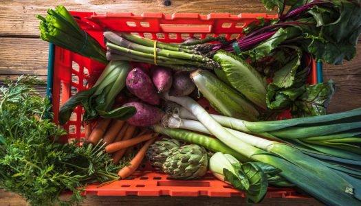 Torne sua alimentação sustentável com essas 6 dicas