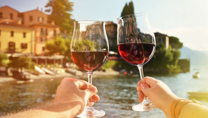 vinho primitivo - itália