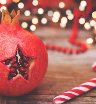 frutas da estação natal - capa