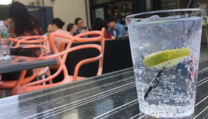 bloquinho de carnaval - gin tônica