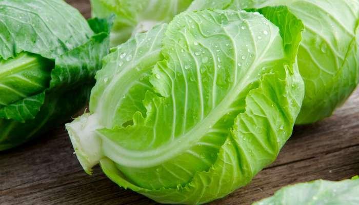 frutas, vegetais e legumes de fevereiro - verduras
