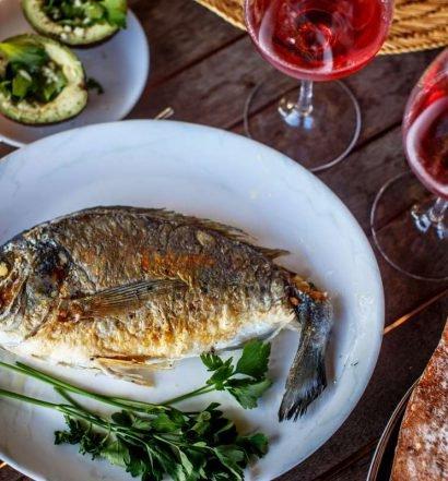 harmonização de vinhos e peixes - capa