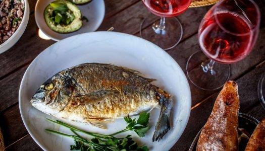 Aprenda a fazer a harmonização de vinhos e peixes