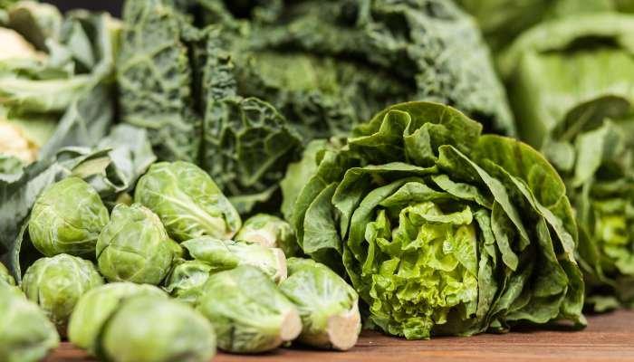 legumes de março - folhas