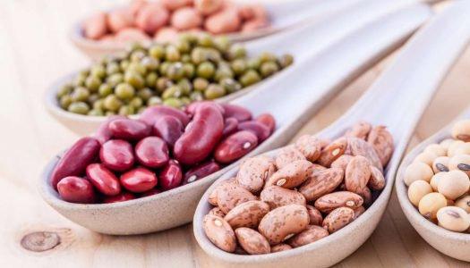 proteínas vegetais - capa