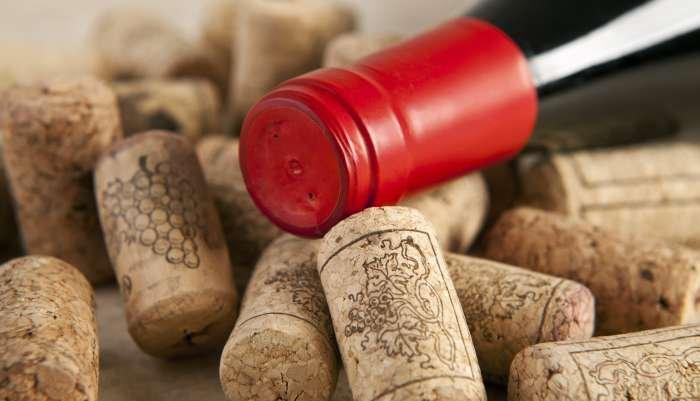 benefícios do vinho - garrafa
