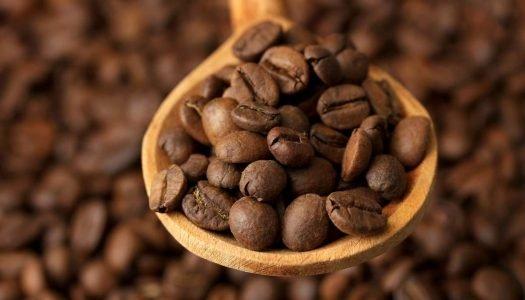 Café do Brasil: Conheça as características e as principais regiões produtoras da bebida