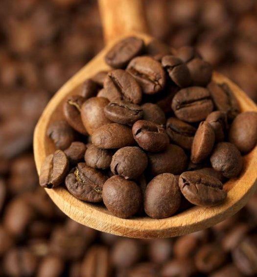 café do brasil - capa