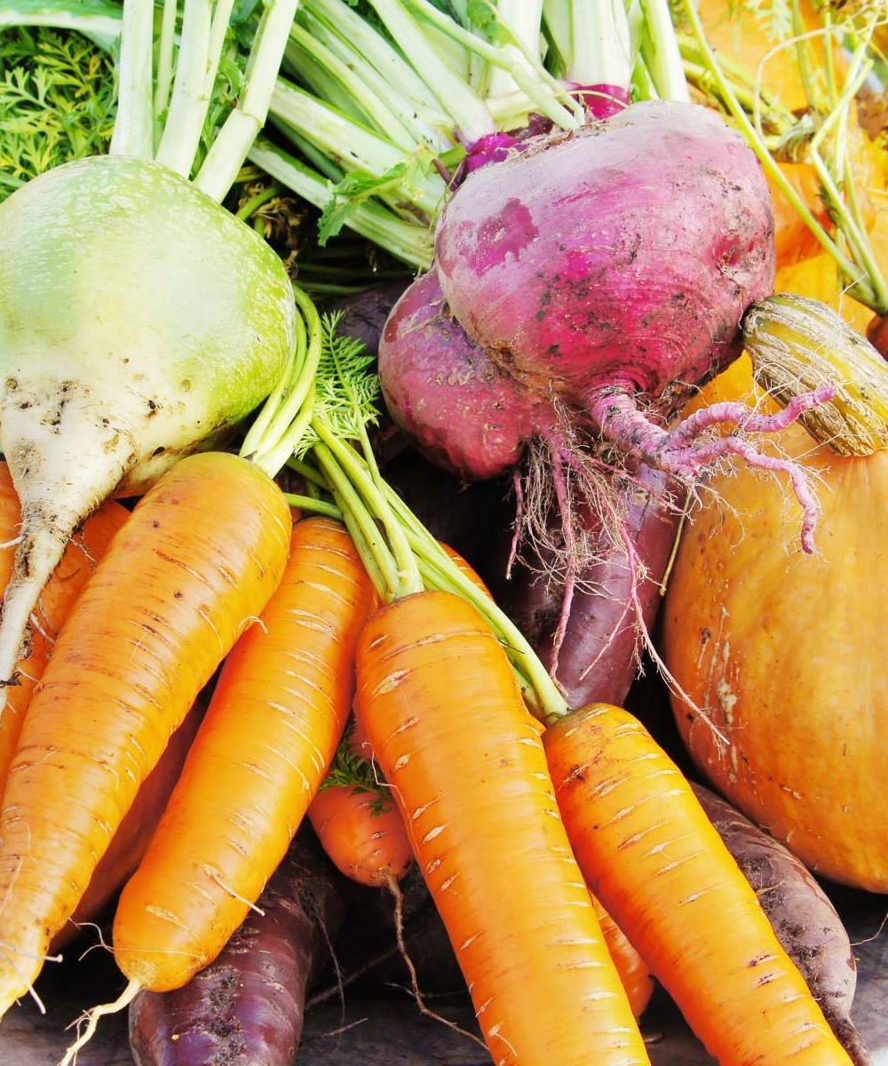 Conheça as frutas, legumes e vegetais de Maio