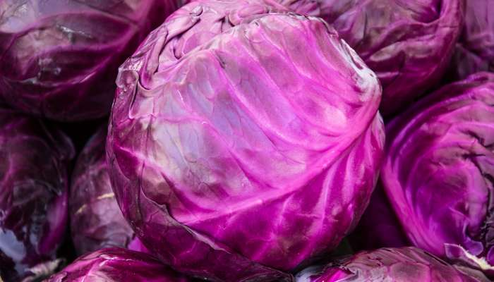 frutas, legumes e vegetais de maio - repolho roxo