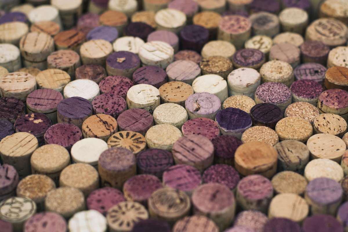 rolha de vinho - capa