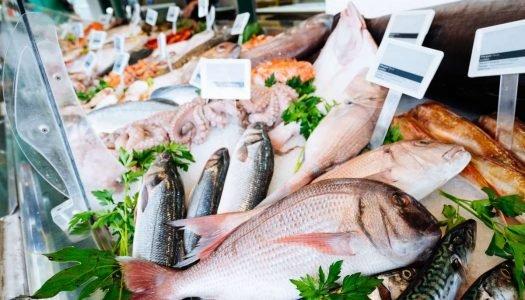 4 dicas para comprar peixe da maneira certa