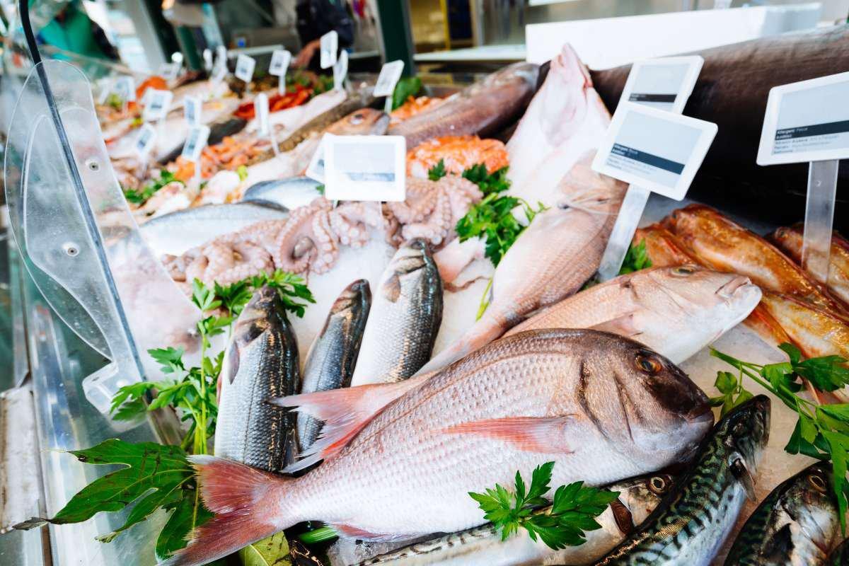 comprar peixe - capa