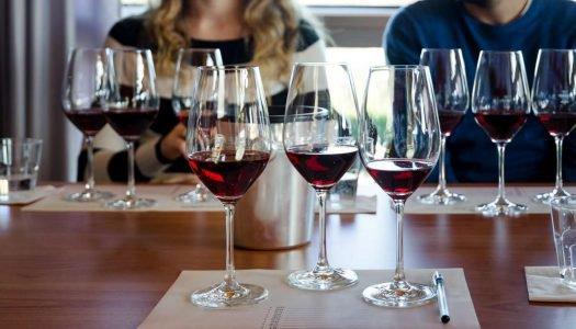 Organize uma degustação de vinhos na sua casa!