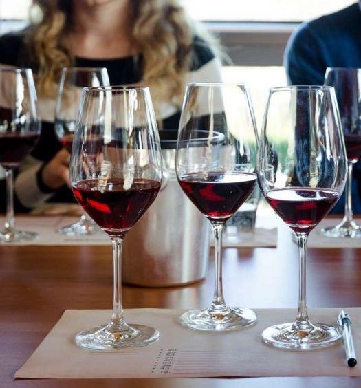 degustação de vinhos - capa