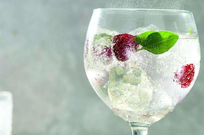 gin tônica - texto