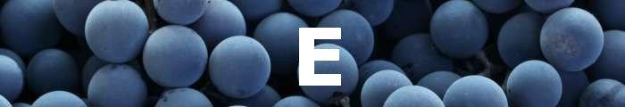 letra E