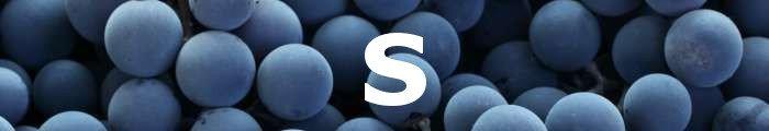 letra S