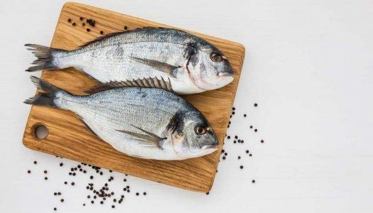 [Infográfico] Quais são os principais cortes para peixes