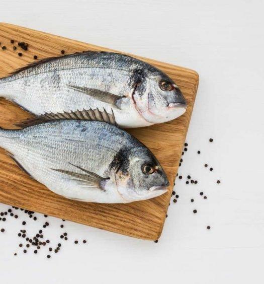 corte para peixes - capa