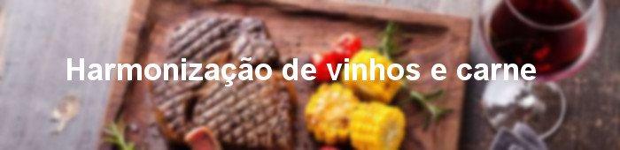harmonização de vinhos e carne