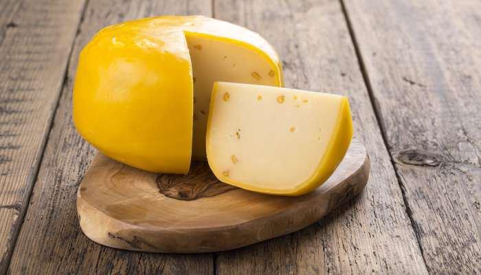 queijos duros - gouda