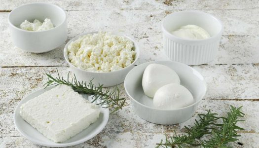 Quais são os principais tipos de queijo fresco?
