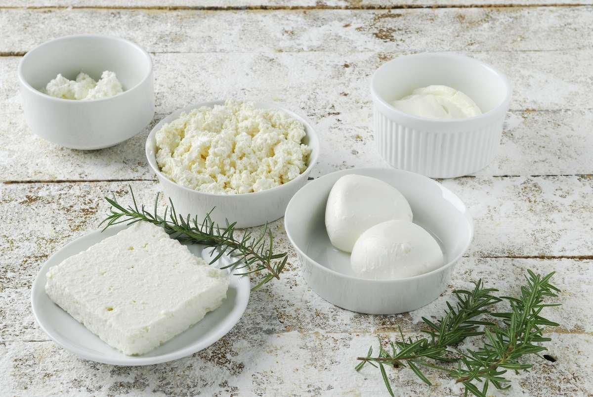 queijos frescos - capa