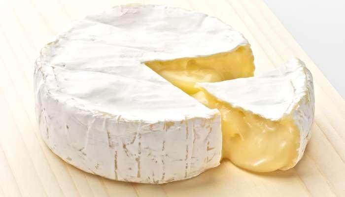 queijos macios - camembert