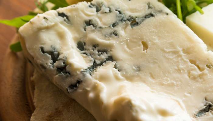 queijos macios - gorgonzola