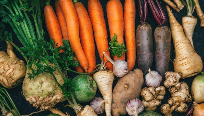 vegetais de julho - legumes