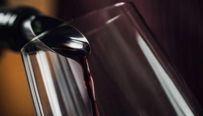 vinhos alentejanos - texto 1