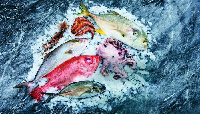 especial de pescados - 1