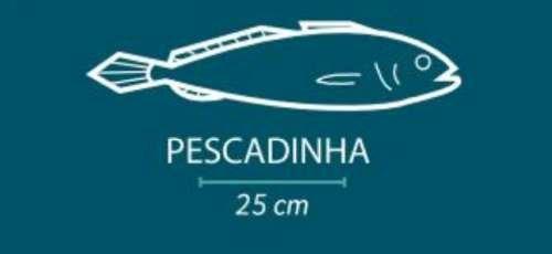 pescadinha